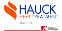 hauck heat teeatment, s.a.u.
